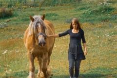 Shekinah-mit-Pferd-1
